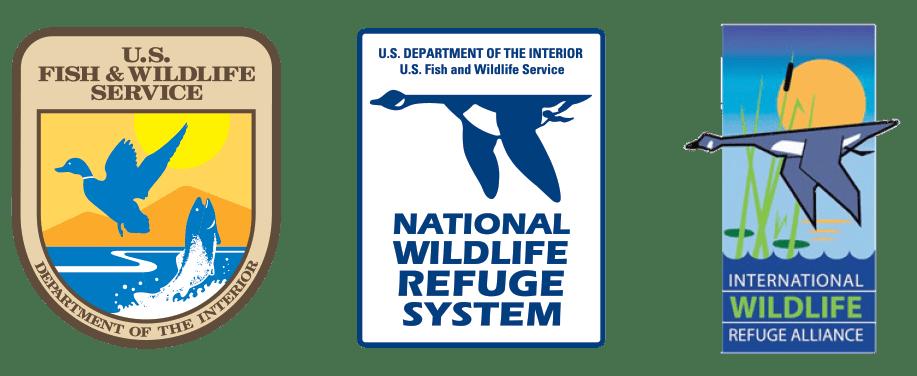 Detroit River International Wildlife Refuge